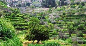 Battir, Palestine - now a UNESCO heritage site