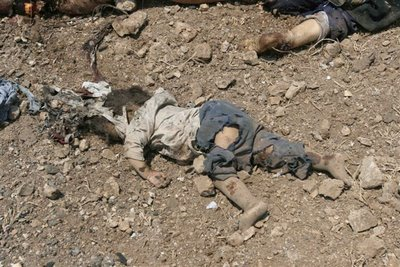 dead Lebanese baby