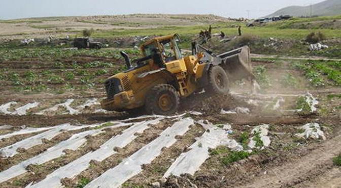 Israeli Bulldozers Raze Large Areas of Land South of Jenin