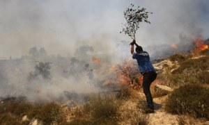 Violent Jews set Palestinian's farm on fire for revenge
