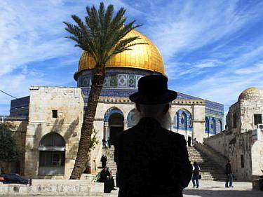 Ultra-orthodox Jew in the al-Aqsa compound