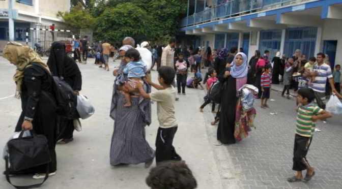 Gaza: UNOCHA Emergency Situation Report 29 July