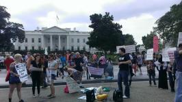 Day of Rage: Washington D.C