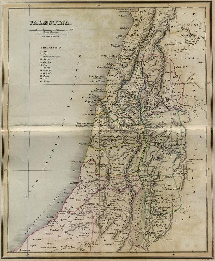 history and geography of palestine essay Essay canada's geography and history have shaped politics canada's geography and historic development have shaped its current political context.